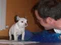 Paco de cachorro con Alberto