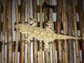 Mariana-gecko2