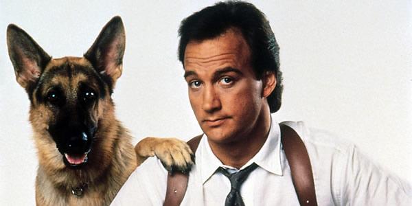 Razas de perros famosas en el cine - Super Agente K9