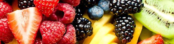 Las frutas que puede comer tu perro