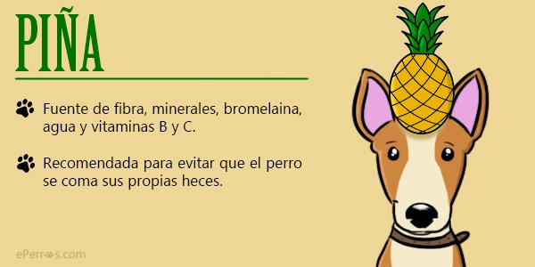 Perros y piña