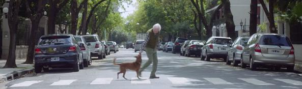 """Vídeo """"El hombre y el perro"""""""