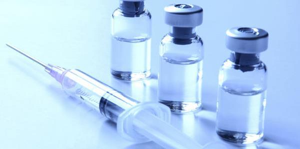 Vacunación del perro