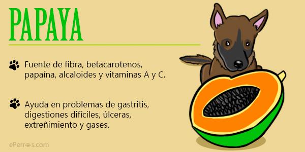 perros y papaya