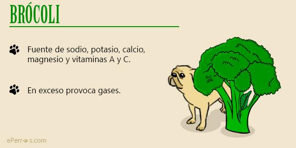Brocoli - Verduras para nuestro perro