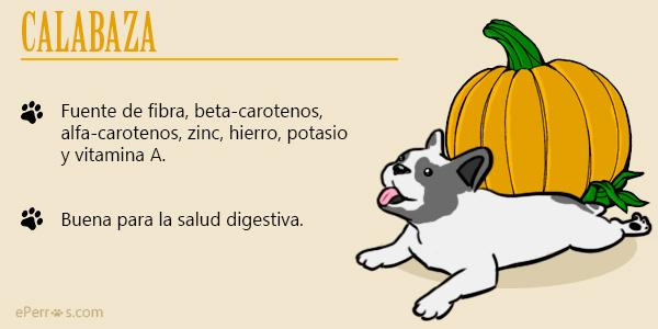 Verduras y hortalizas indicadas para dar a tu perro, como la calabaza