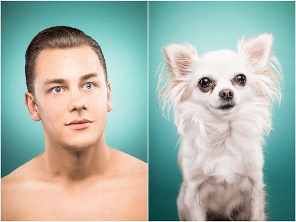 retratos como sus perros