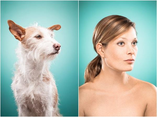 perros y dueños iguales