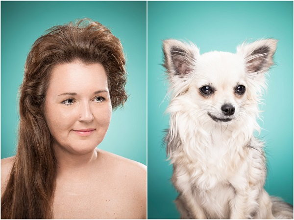 perros peinados como sus dueños