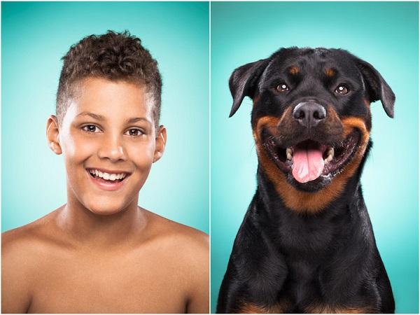 perros y dueños misma cara