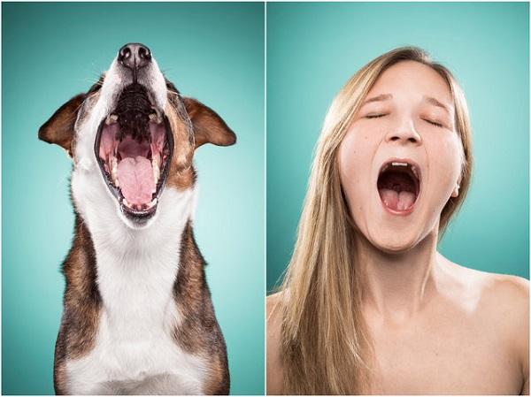 perro y dueña bostezando