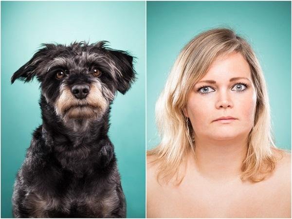 perros pareciendose a sus dueños