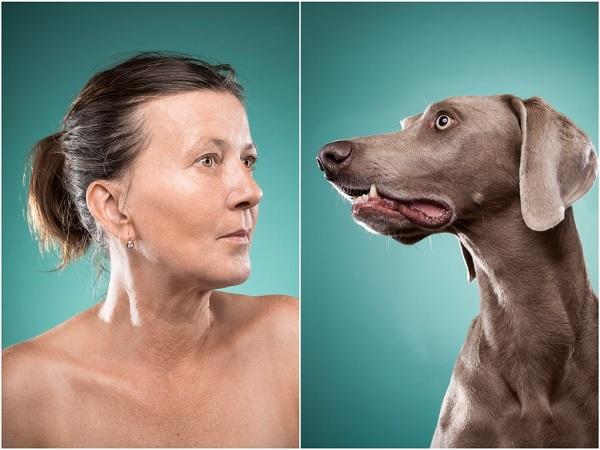 perros con sus dueños