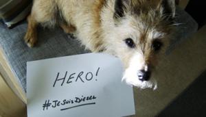 Los perros rinden homenaje a Diesel