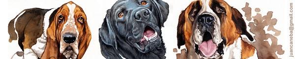 Retratos para perros de Juan Cáneba