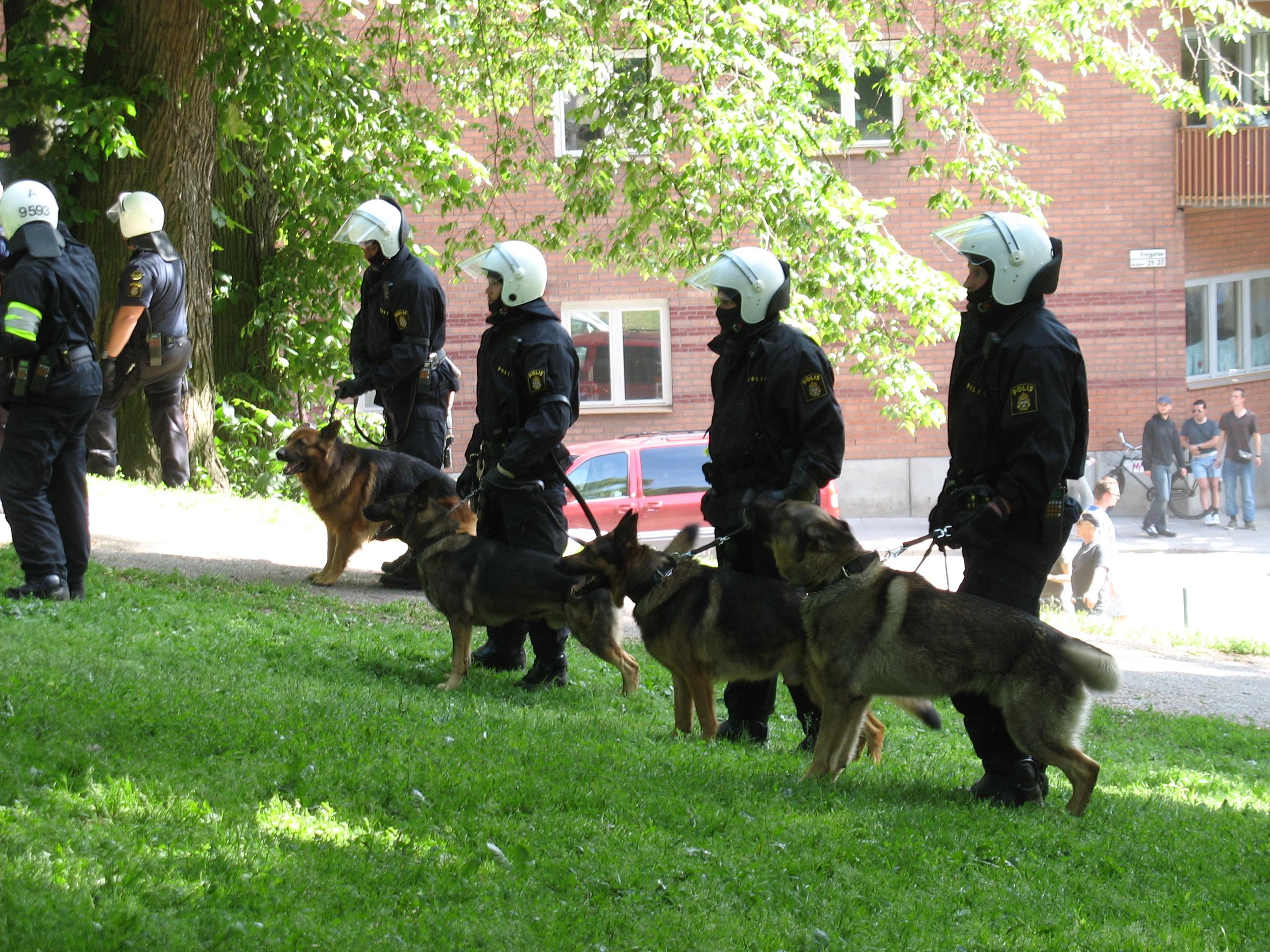 ¿Jubilación para los perros policía?