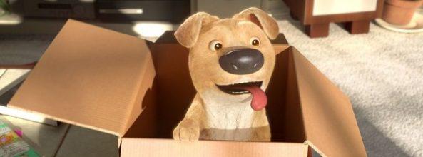 "Vídeo ""The Present"", un cortometraje sobre perros"