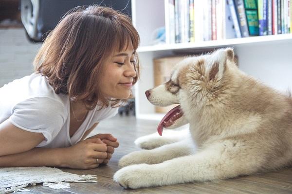 no te enamores de una mujer con perro