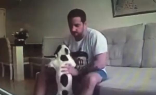 maltratador-perros