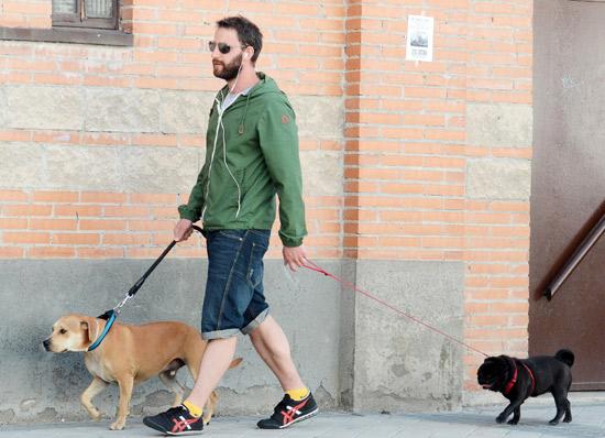 Dani Rovira y sus perros