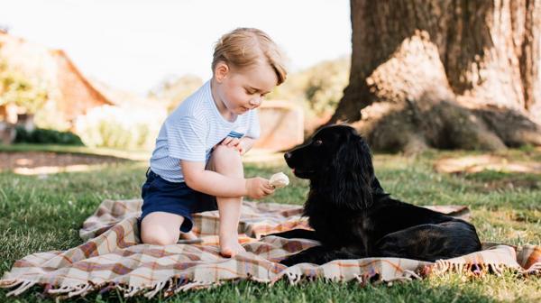 El pequeño príncipe George desata la polémica con su perro