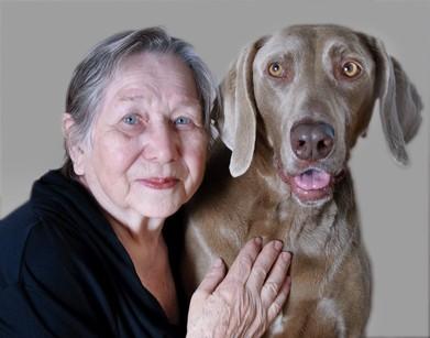 perros y ancianos