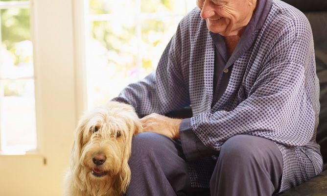 mascotas en personas ancianas