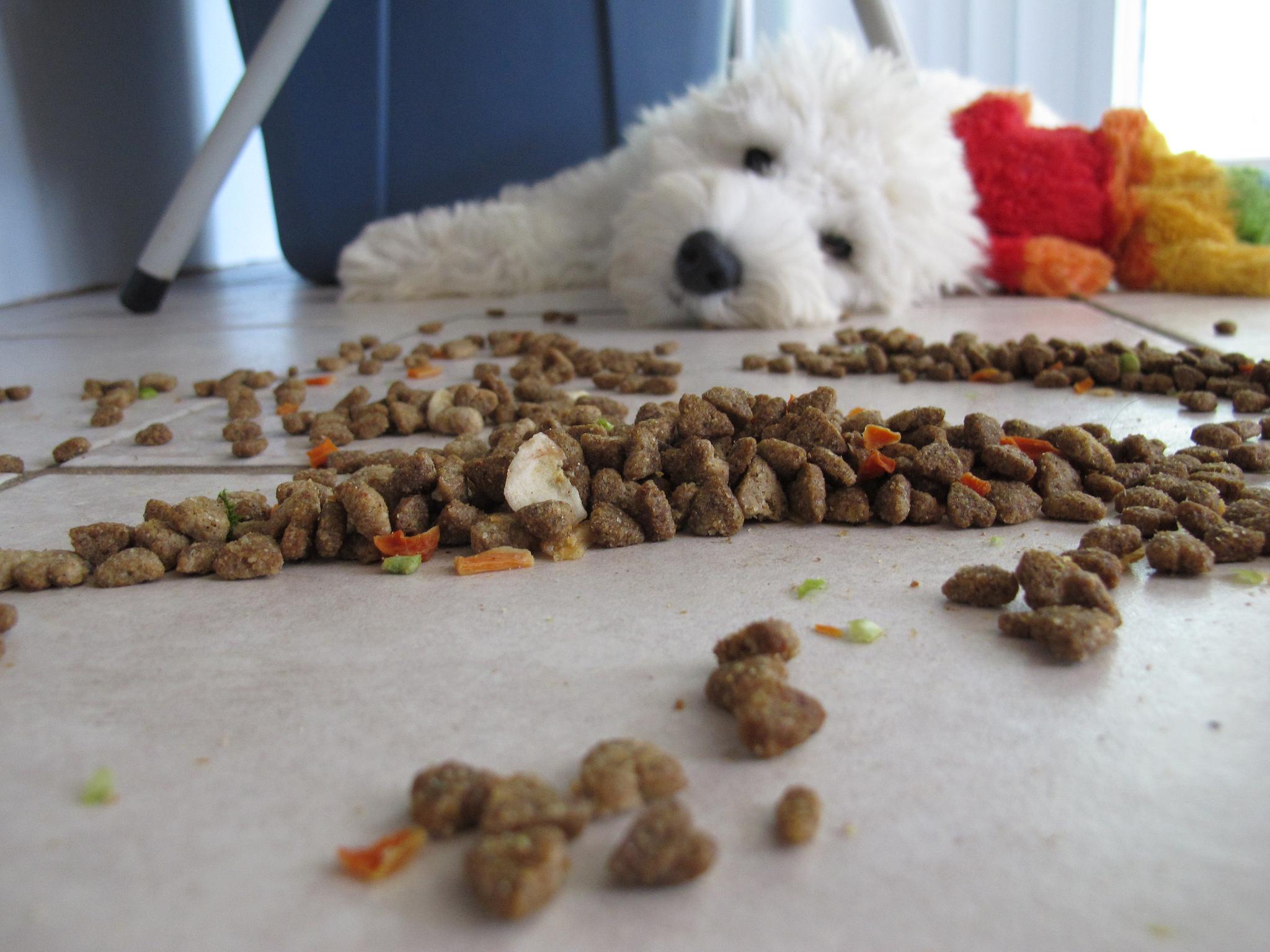 Mejoran la marca de pienso para perros Beneful