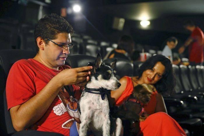 """La """"petfriendly"""": ¡35 perros ya han estado en el cine!"""