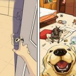 Las diferencias de no tener perro a poner un perro en tu vida