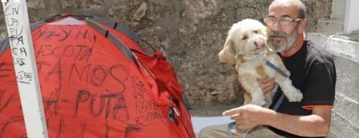 perros-cai-caritas-indigentes