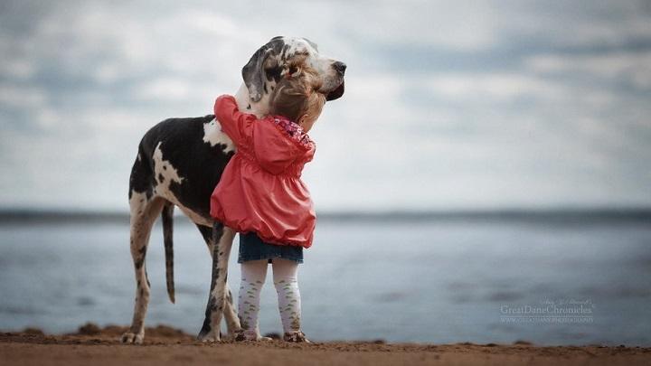 Fotografías de perros y niños enloquecen las redes