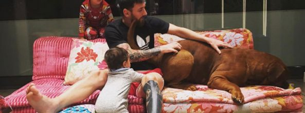 Messi enseña a Hulk, su gigante Dogo de Burdeos