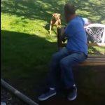 El vídeo conmovedor de un perro que no reconoce a su dueño después de un gran cambio