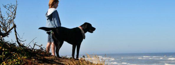 Curiosidades de perros que te sorprenderán