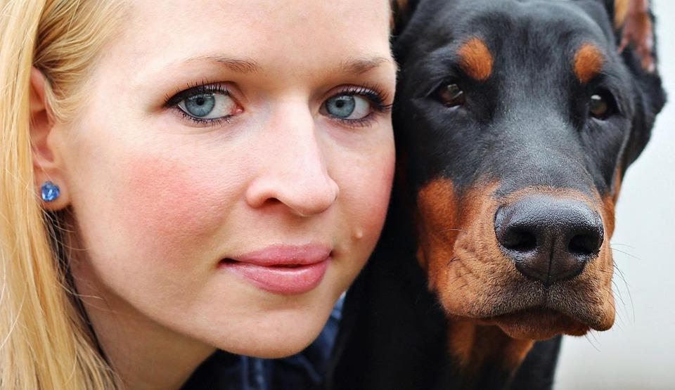Investigan dispositivo traductor lenguaje perros a humanos