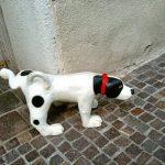 Campañas para que los dueños de perros limpien calles en BCN
