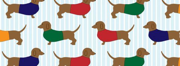 Reviews 3 productos para evitar el sarro de tu perro
