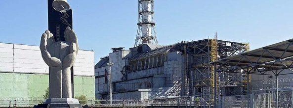 Te contamos todo acerca de los perros de Chernóbil