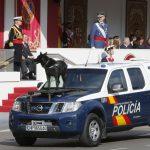 El perro policía de España se hace popular en redes