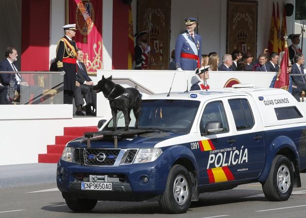 El perro policía de España se hace popular en redes sociales