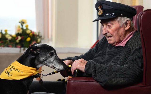 Anciano y su perro fiel