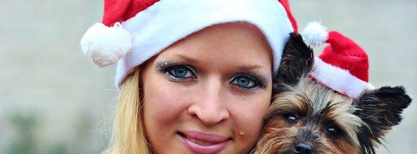 Regalos de Navidad para perros ¿cuáles comprar?