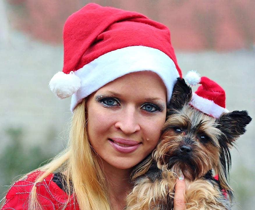 Regalos de Navidad para perros cuales comprar