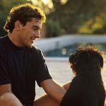 Se humanizan los perros a nivel jurídico en España