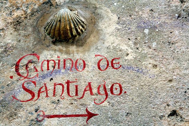 Hacer el camino de Santiago con perros