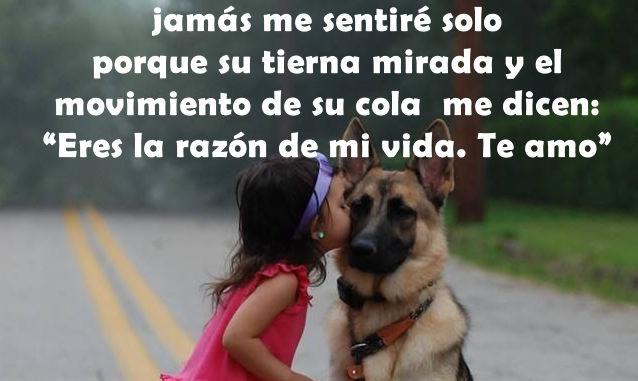 Personaliza tus redes sociales con frases de amor a los perros