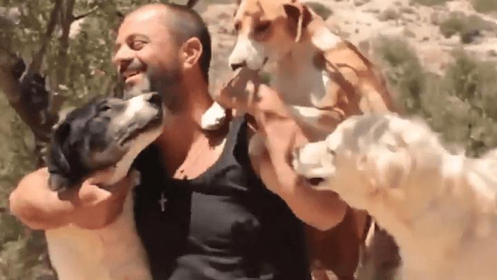 Takis, el hombre que se hizo viral por recoger perros